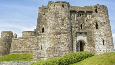 Castell Cydweli (Cadw)